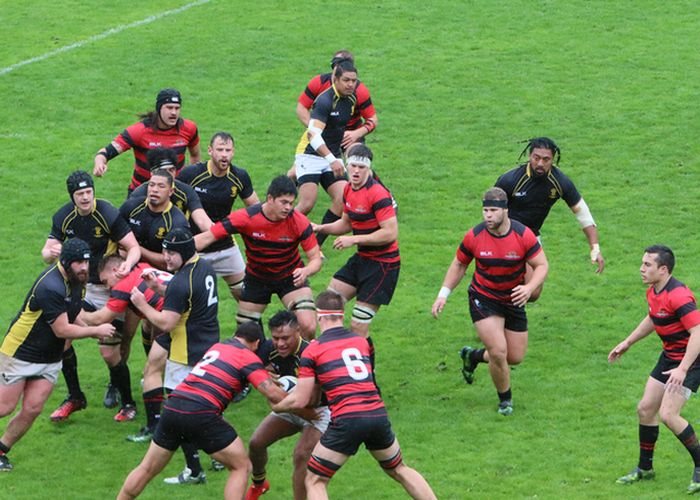 Wellington Pride and Development teams miss out in the rain