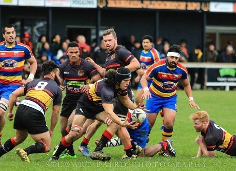Penultimate round pressure-cooker in the Swindale Shield